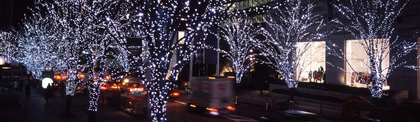 Catene luminose a led da esterno for Catalogo alberi da giardino